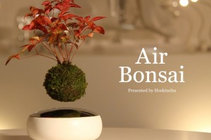 Hoshinchu Air Bonsai Garden Defies Gravity